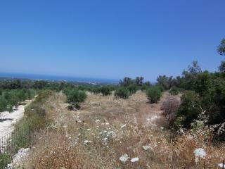 Plot, sea view, 6.500 m2 in Roupes